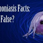 trichomoniasis facts true or false