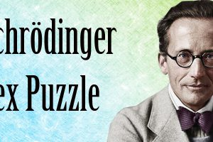 schrodinger-sex-puzzle