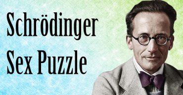 Schrödinger sex puzzle