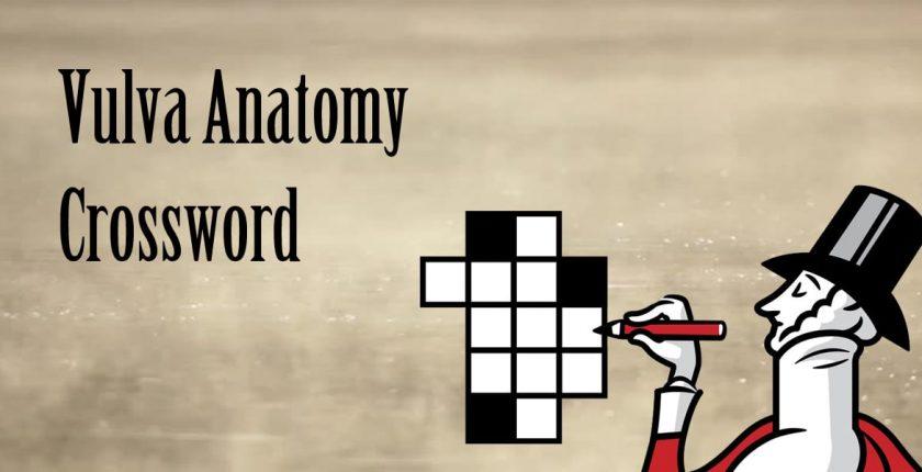 Vulva anatomy crossword