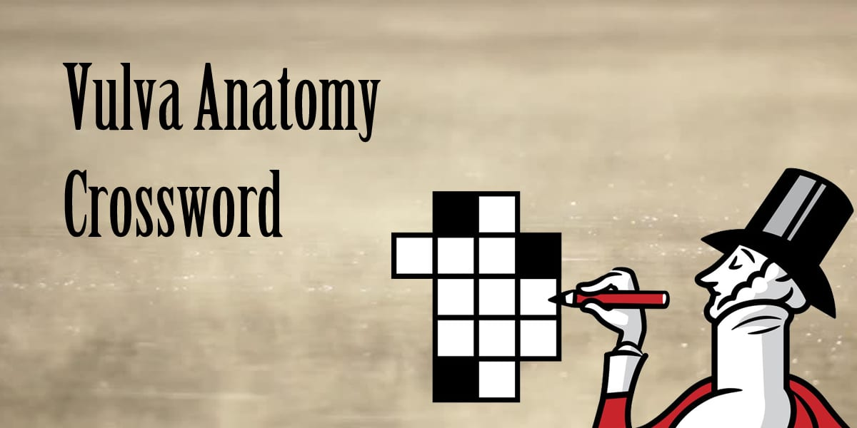Vulva anatomy crossword