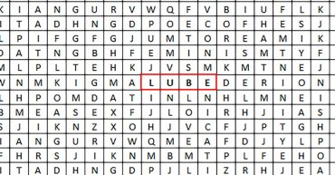 lube wordsearch