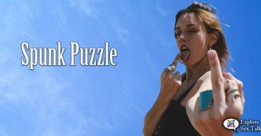 spunk puzzle