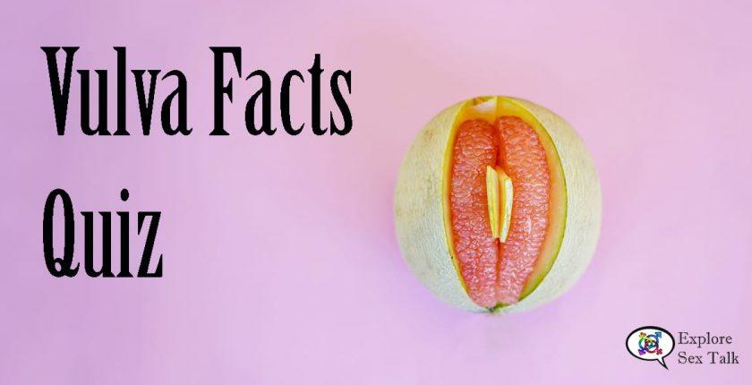vulva facts quiz